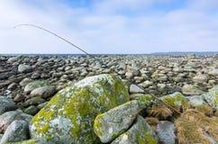 Område för fiske för havsforell Royaltyfri Fotografi