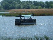 Område för naturlig reserv för Tisza tó Royaltyfri Fotografi