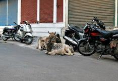 område kraxar att vila för parkering Royaltyfri Foto