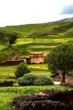områden lantligt s tibet Arkivfoto