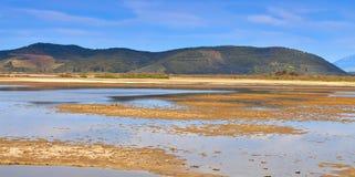 områdesgreece stor swamp Royaltyfria Bilder