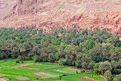 områdeskasbahs morocco tusen Royaltyfri Bild