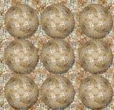 Omring de bal van muntstukken Royalty-vrije Stock Foto