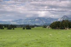 Omringend gebied van Allgau Stock Foto's