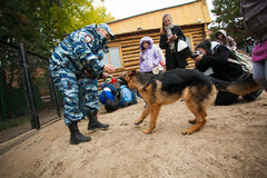 Omsk, Russia - August 22, 2014: Canine Center Open Day Royalty Free Stock Images