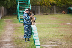 Omsk, Russia - August 22, 2014: Canine Center Training Stock Photography
