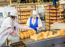 Omsk, Russland - 19. Dezember 2014: Arbeitskräfte an der Brotfabrik lizenzfreie stockfotos