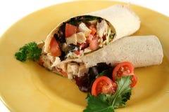 Omslag 1 van de Salade van de kip Royalty-vrije Stock Afbeeldingen