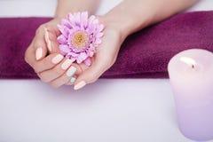 omsorgsbomullsfingernailen spikar att ta bort swabfernissa Closeupen av härliga kvinnahänder med naturligt spikar i skönhetsalong fotografering för bildbyråer