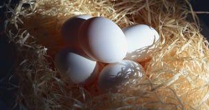 Omwenteling van witte eieren stock footage