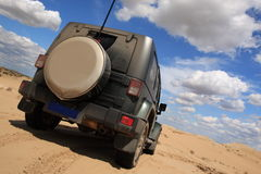 On Safari In Desert Stock Photography