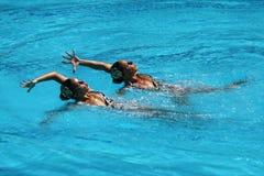 Ona Carbonell och Gemma Mengual av Spanien konkurrerar under den synkroniseringsrutinmässiga förberedande åtgärden för simningdue Arkivbilder