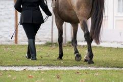Ona i jej koń Obrazy Royalty Free
