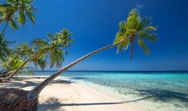 Onaangeroerd tropisch strand Stock Afbeelding