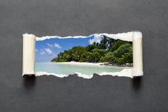 Onaangeroerd tropisch strand in de Indische Oceaan royalty-vrije stock afbeelding