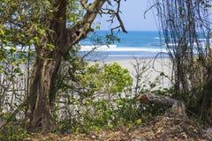 Onaangeroerd zandig strand Royalty-vrije Stock Fotografie