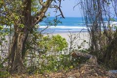 Onaangeroerd zandig strand Royalty-vrije Stock Afbeeldingen