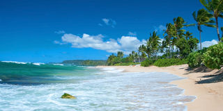Onaangeroerd zandig strand met palmenbomen en azuurblauwe oceaan in backgr stock afbeelding