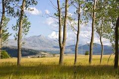 Onaangeroerde aard, omringend meer Satorsko stock fotografie
