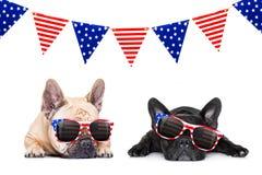 Onafhankelijkheid dag vierde van juli-hond royalty-vrije stock foto
