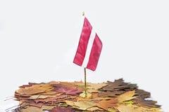 Onafhankelijkheidsdag van Letland Het vieren van 100 jaar van onafhankelijkheid stock foto's