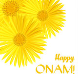 Onam feliz Saludos de la flor para el festival indio del sur Onam Ilustración del vector Imagen de archivo