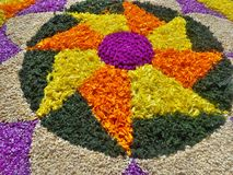 Onam flower decoration Stock Image