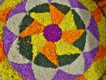 Onam flower festivel stock image
