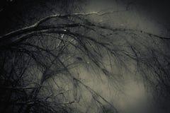 Onaturligt ljus fotografering för bildbyråer