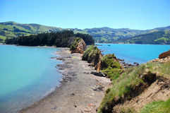 Onawe Peninsula New Zealand Stock Photos