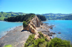 Onawe peninsula New Zealand Royalty Free Stock Photos