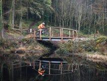 Onbekende cylcist die een brug in het park van Galloway kruisen Royalty-vrije Stock Foto's