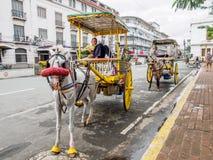 Onbekende mens met paard getrokken vervoer stock afbeelding