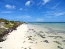 Onbeschadigd strand Royalty-vrije Stock Foto's