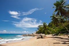 Onbeschadigd tropisch strand in Sri Lanka Royalty-vrije Stock Foto