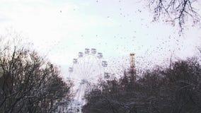 Onbeweeglijk ferriswiel in het pretpark op grijze hemelachtergrond voorraad Mooie troep van vogels die vliegen vanaf stock footage