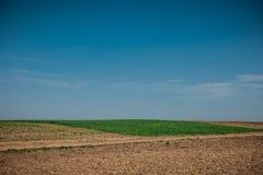 Onbewerkt gebied met wielsporen in de lente dichtbij tarweland Vuiltextuur met blauwe hemel De textuur van het het vuilgebied van stock foto