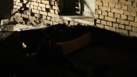 Onbewuste persoon die in duisternis na diefstal, moordenaar liggen die misdaadscène verlaten stock footage