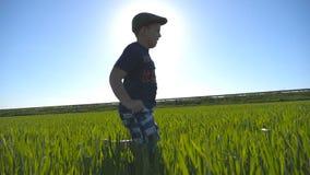 Onbezorgd kind in hoedenjogging bij de weide in de zomer en het hebben van pret De gelukkige jongen neemt het gebied met groen do stock videobeelden
