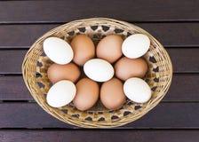 Once huevos frescos Imagen de archivo