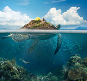 Сoncept Of Travel And Adventure, Above And Under Water. Stock Photos