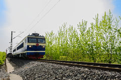Oncoming electric train in sunny spring Stock Photography