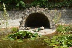 Ond przerastający z wodnymi lelujami z postaciami żółwie i ptaki obrazy royalty free