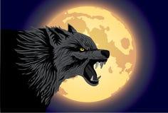 ond wolf Royaltyfri Foto