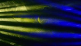 Onda abstracta del color, tinta almacen de video