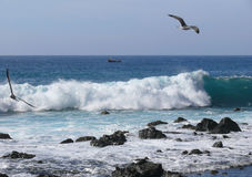 Onda al litorale di La Gomera Immagini Stock Libere da Diritti