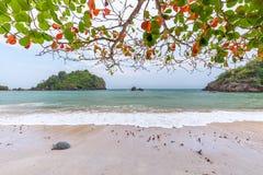Onda azul hermosa del mar en la playa blanca de la arena, Prachuap Khiri Khan Province, Tailandia fotografía de archivo