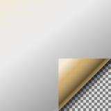 Onda da página com canto ondulado transparente do ouro ilustração royalty free