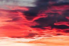 Onda de cielo felina Fotos de archivo