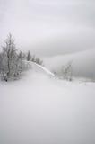 Onda de la nieve imagen de archivo